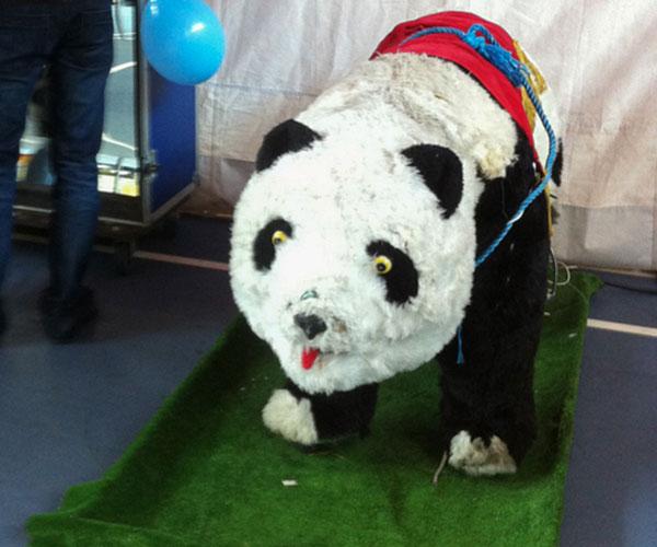Panda-Mecanico